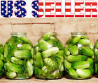 30+ ORGANICALLY GROWN Homemade Pickles Cucumber Seeds Sweet Heirloom NON-GMO USA