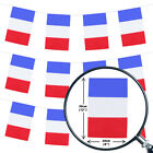 FRENCH BUNTING BASTILLE 100FT COUNTRY NATIONAL FLAG PARTY DECORATION PVC