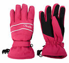Dare2b Hang On Womens Ared 5000 Waterproof Breathable Lined Stretch Gloves