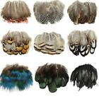 Beautiful rooster tail pheasant neck feathers 6-8inch 5 Colors 20pcs/Set Crafts