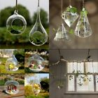 Hanging Glass Plants Flower Vase Terrarium Container Home Party Wedding Decor