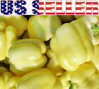 30+ ORGANICALLY GROWN Soroksari White Bell Pepper Seeds Heirloom NON-GMO Sweet