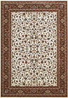 Ivory Scrolls Swirls Vines Traditional-European Area Rug Bordered 1900-01415