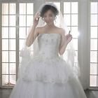 Amazing Bridal Veils Chapel Flower Lace Edge Long Tail Veil Wedding Derss Wrap