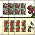 Armenia - 2011 - Plants of Armenia, Flowers, 2 sheets of 8v