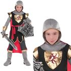 Childrens Brave Crusader Costume Kids Knight Outfit Boys Girls Party Fancy Dress