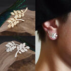 Popular Women Charming Gold Plated Leaf Design Stud Earrings Jewelry Wholesale