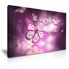 Animals Butterfly Flower Water Canvas Wall Art Picture Print ~ 9 Sizes