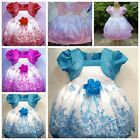 Kids Girls Princess Dress Cartoon Halloween Party Cosplay Chiristmas Costume