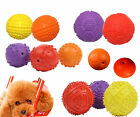 NEW Pet Toys Dog Toys Squeaky Basketball Football Softball Rubber Balls