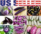 30+ ORGANICALLY GROWN Eggplant MIX Seeds 11 Varieties Heirloom NON-GMO Italian