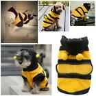Cute Honey Bumble Bee Design Costume Outfit Clothes for Small Dog Cat Lovely