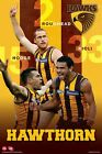 """AFL HAWTHORN PLAYERS  POSTER """"LICENSED"""" ROUGHEAD, HODGE, RIOLI"""