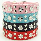 Pink Blue Black Red Leather Flowers Studded Collar Pet Dog Puppy Collar