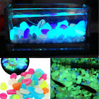 100 pcs Set Glow in The Dark Pebbles Luminous Stones Home Fish Tank Decoration