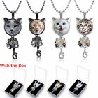 Womens Owl Necklace Printed Cabochon Time Gem Cute Kittys Cabochon Accessory New