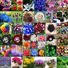 Nice Flower Seeds Garden Home Potted Rare Flower Plant Ornamental Seed Decor HOT