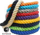 FMS Colored Twisted Cotton Rope- 1/4, 3/8, 1/2, 5/8, 3/4 & 1-in Rope by the Foot