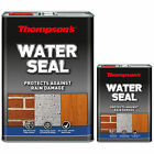 Thompson's Water Seal 1L or 5L Waterproof Brick Stone Rain Damage Protection