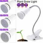 E27 LED Grow Light Red+Blue 220V Lamp Clip For Hydroponics Plants Fostering  A4