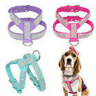 XXS/XS/S/M Small Dog Harness Soft Leather Vest for chihuahua Toy Poodle yorkie