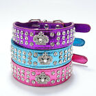 Bling Rhinestone Crystal Diamante Crown Charm Leather Pet Dog Cat Puppy Collar