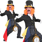 DELUXE MAD HATTER MENS BOOK CHARACTER FANCY DRESS COSTUME WONDERLAND FAIRYTALE