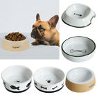 Nontoxic Pet Dog Cat Water Feeder Food Dispenser for Small Animals Dogs Cats