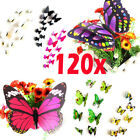 120 x 3D Butterfly Sticker Art Design Vivid Decal Wall Stickers Home Decor Room