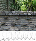 Anti Bird fence wall Spikes Deterrent Pest Control Repel Cat Animal Anti Climb