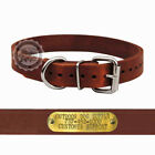 "1"" Custom Leather D Ring Dog Collar with a Free Brass Name Tag"