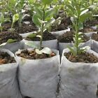 US 100pcs Round Fabric Pots Plant Pouch Root Container Grow Bag Container White