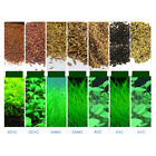 Внешний вид - Plant Seed Fish Tank Aquarium Aquatic Water Grass Decor Garden Foreground Plants