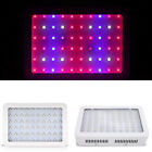 600/1000W Watt LED Grow Light Lamp Plants Flower Oganic Growing Full Spectrum AT