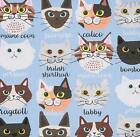 Cat Fabric - Calico & Company - Blue - By the Yard, Half-Yard, or Fat Quarter