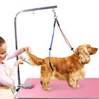 Dog Grooming NO SIT LIE DOWN RESTRAINT HARNESS Leash SYSTEM Nylon for Table Arm