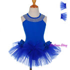 Girl Blue Ballet Tutu Dancewear Costume Fairy Dress w/ Arm-mitts Size 3T-8 BA054