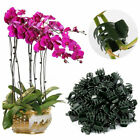 50 PC Plant Support Clips Garden Clips Flower Orchid Stem Clips for Vine Support