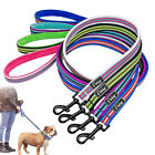Durable Nylon Pet Puppy Dog Leash for Walking with Soft Fleece Padded Handle 4ft