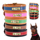 Personalized Large Dog Collars Leather Padded Custom Pet ID Nameplate Engraved