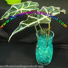 Water Marbles Green Crystal Soil Gel Balls Plants Decoration Wedding Centerpiece