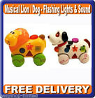 Toy Electronic Musical Animal Lion / Dog Lights & Sound 12+mths Boxed New