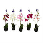 "IKEA artificial potted plant ORCHID flower 18"" lifelike nature pot herb Fejka"