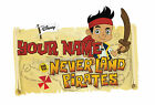 PERSONALISED JAKE AND THE NEVERLAND PIRATES IRON ON T-SHIRT TRANSFER STICKER lot