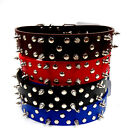Dog Pet Collar Spiked Studded  Faux Leather Belt Red Blue Black Brown L