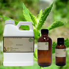 Spearmint Essential Oil (100% Pure/Uncut) FREE SHIPPING