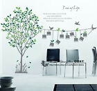 Tree Branches Bird Wall stickers Vinyl Wall Decal Removable Art Decor Home Deco