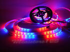 5/10/15/20M SMD IP65 5050 Dream Horse Race RGB LED Strip& Remote controller