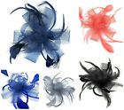 Large Comb Feather Fascinator Ladies Day Wedding Races Royal Ascot