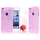Thin Slim Rose Flower Hard Case Cover for iPhone 5 & 5S + Free Screen Protector